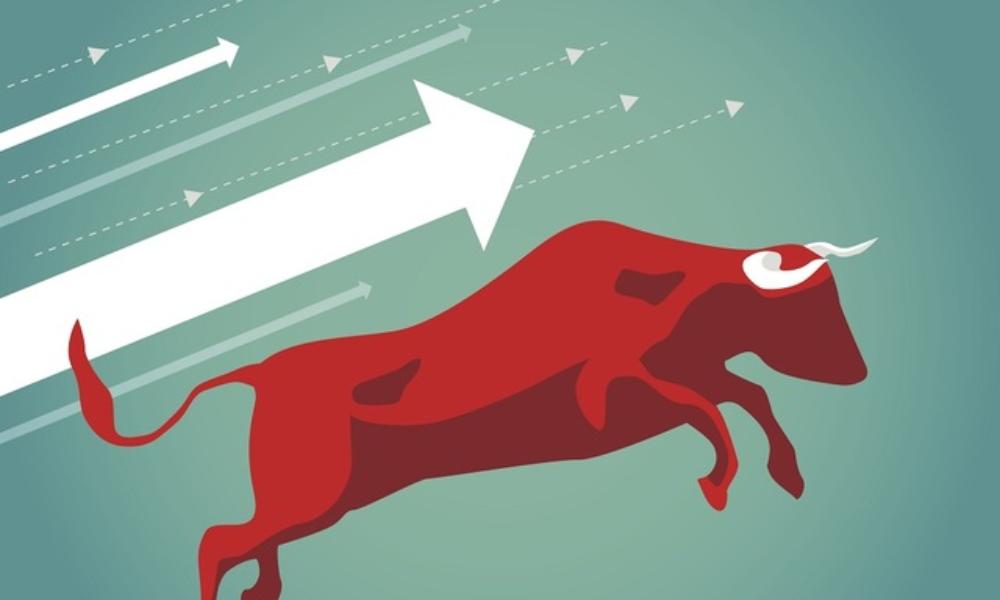 investor interest